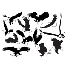 eagles in silhouettes vector image vector image