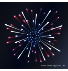 Fireworks background for USA Independence Day vector image