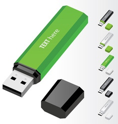 Green usb flash drive vector