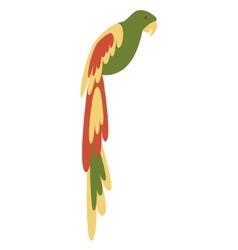 Ara parrot vector image