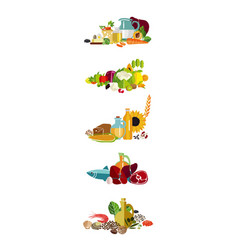 fundamentals of a balanced diet vector image vector image