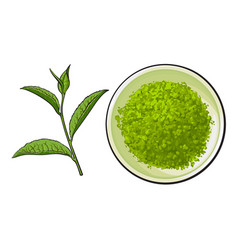 Hand drawn bowl of matcha powder and green tea vector