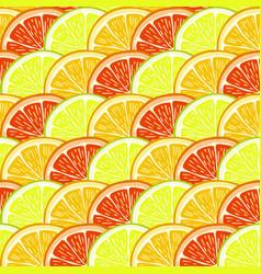 Orange lemon and grapefruit slices vector
