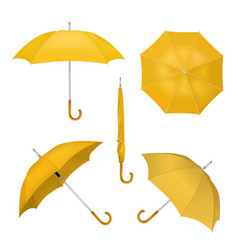 yellow umbrellas realistic vector image