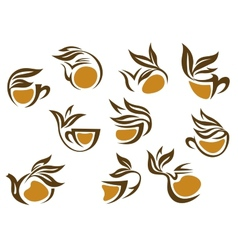 Organic herbal tea icons vector