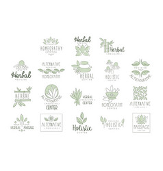 Alternative medicine center with oriental herbal vector
