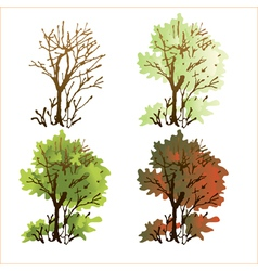 Deciduous tree vector