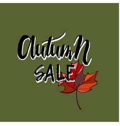 Hello autumn sale text poster of leaf fall vector