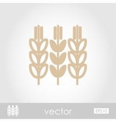 Spikelets of wheat icon vector image