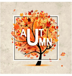 autumn tree banner on grunge paper for your vector image vector image