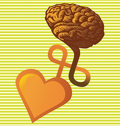 Connection between heart and brain vector