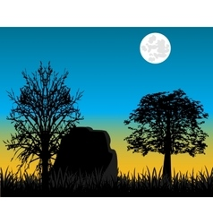 Beautiful dawning in wood vector