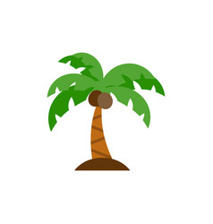 palm tree icon flat vector image