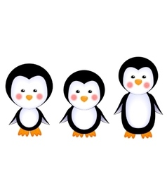 Cute penguins baby vector