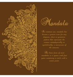 Mandala brown background gold ornament vector