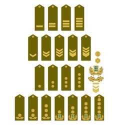 Armed Forces insignia Estonia vector image vector image