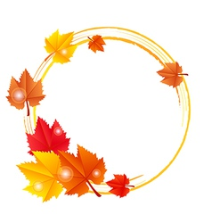 fall leaves frame vector image