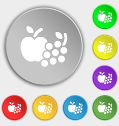 Fruits web icons sign Symbol on eight flat buttons vector image vector image