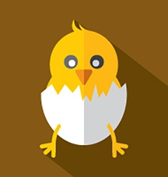 Modern Flat Design Chick Icon vector image