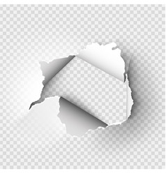 ragged hole torn in ripped paper vector image vector image