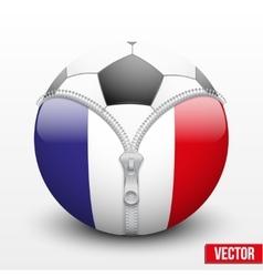 Soccer ball inside france symbol vector