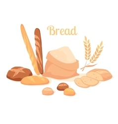 Bread isolated on white background vector