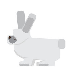 Isolated abstract rabbit vector