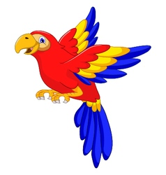 Macaw bird cartoon flying vector