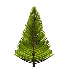 Tree pine forest icon vector