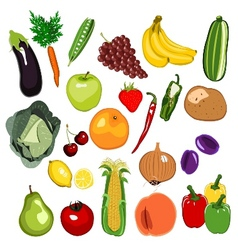 Fruit and vegetable set vector