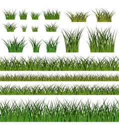 Green grass seamless pattern and bushes nature vector image