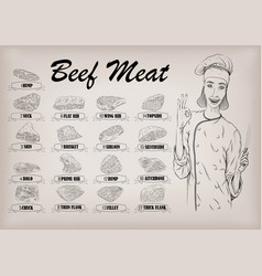beef cow carcass cut parts info graphics poster vector image vector image