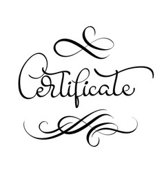 certificate word with flourish on white background vector image vector image