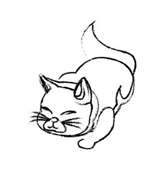 Cat animal pet adorable sketch vector