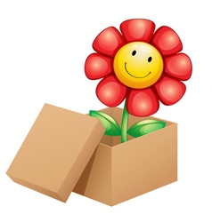 A flower inside the box vector