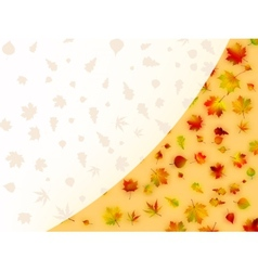 Colorful autumn leaves card EPS 8 vector image