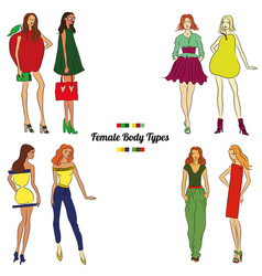 Female body types and body shapes vector