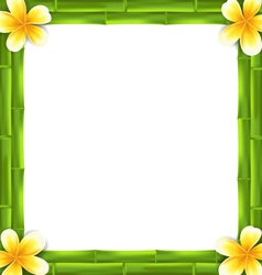 Natural Frame Made Bamboo and Frangipani Flowers vector image