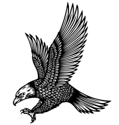 eagle attack vector image