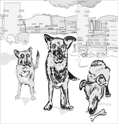 Dogs in the city vector