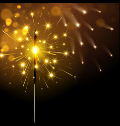 Sparkling Sparkler vector image