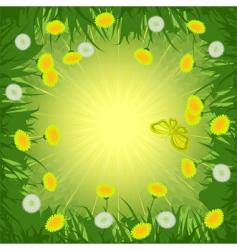 dandelions background vector image vector image