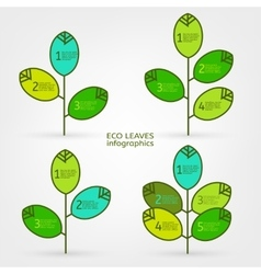 Leaves infographic vector image