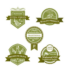 olive product badge set of oil bottle label design vector image