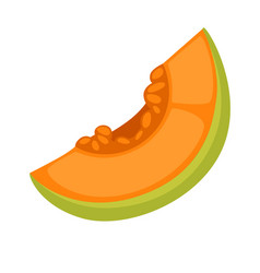 slice of fresh melon vector image