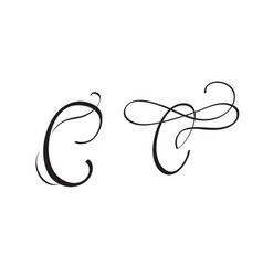 Art calligraphy letter c with flourish of vintage vector