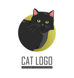 black cat flat design vector image