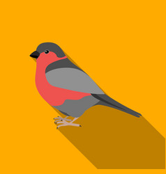 bullfinch icon in flate style isolated on white vector image vector image