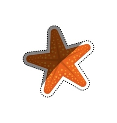 Sea star isolated vector