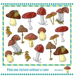 with color mushrooms vector image